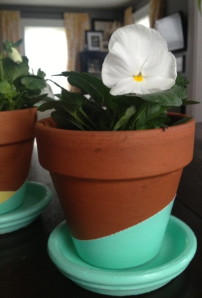 Color-Dipped Pots from The Loud and Clear